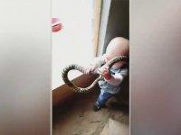 Yılan Avcısı Küçük Çocuk