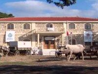 Sahra Hastanelerinin Müzeyle Günümüze Taşınması