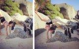 Penguenlere Yoga Gösterisi Yapan Kadın