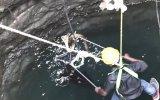 Su Çukurundan Kobra Yılanını Kurtarmaya Çalışan Adam
