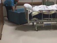 Hastane Odasında Fare Avı