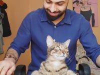 Kedi.exe'nin Yanıt Vermemesi - Piano ve Kedi