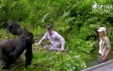 Eşini Gorillerle Tanıştırmaya Götüren Adam
