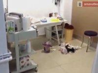 Kadın  Kuaförü Görünümlü Kürtaj Merkezi