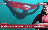 Şahika Ercümen'in Antarktika'da Tüpsüz Dalış Gerçekleştirmesi