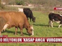Çiftlik Bank'a Rakip Olan Kasap Amca