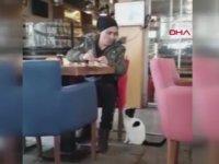 Kahvaltı Yapan Adamdan Yiyecek İsteyen Kedi