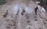 Zimbabwe Askerlerinin Kurşunların Altındaki Sürünme Eğitimi
