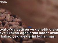 Elli Gramı 3 Bin TL'ye Satılan Dünyanın En Pahalı Çikolatası