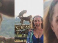 Sevişen Maymunlarla Hatıra Fotoğrafı Çektirmek