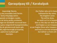 Türk Dillerinin Karşılaştırılması
