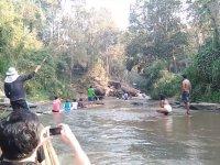 Asabi Filin Salda Gezinti Yapan Turistlere Saldırması