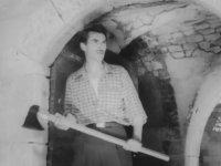 Erkek Ali - Eşref Kolçak & Sevda Ferdağ (1964 - 100 dk)