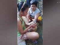 Hamile Köpeği Hayata Döndüren Kadın