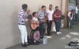 Sokak Sanatçıları  Bir Bilebilsen