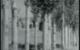 Kara Davut  Kartal Tibet & Tanju Gürsu 1967  90 Dk
