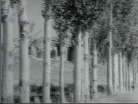 Kara Davut - Kartal Tibet & Tanju Gürsu (1967 - 90 Dk)