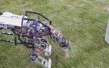 4 Ayaklı Yerli ve Milli Robot  Arat