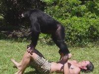 Tarzan'a Spor Yaptıran Maymunlar