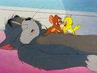 Yenilenmiş Tom ve Jerry
