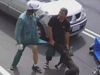 Postacıya Saldıran Pitbull