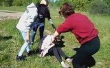Genç Kızı Araya Alıp Vahşice Döven Kızlar