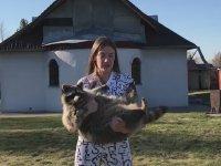 Rakunuyla Spor Yapan Rus Kızı