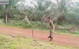 Kobrayı Süt Dökmüş Kediye Döndüren Asker