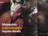 Kediye Kalp Masajıyla Hayata Döndüren İtfaiyeciler