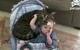Bebek Ve Kedinin Beşik Sefası