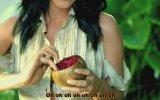 Katy Perry - Roar Türkçe Altyazı