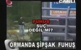 Ormanda Şipşak Fuhuş Dönemi - Flash Tv