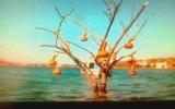 Ağlatan Türkçe Slow Yeni Damar Şarkılar 2014