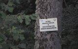 Ardahan Posof İlçesi Resimleri
