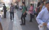 Suriyeli gençlerden Kilislilere ''karanfil ve teşekkür'' - KİLİS