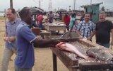 Fildişi Balık Pazarına Giden Türkler