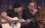 U2  Ordinary LoveCanlı Performans