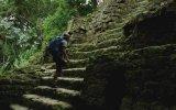 Guatemala Tikal'de Gezinti
