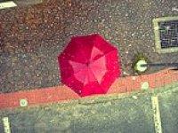 Telefon Bağımlıları İçin Geliştirilmiş Şemsiye - Phone-Brella