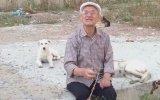 Emekli Maaşı ile Beslediği Köpekleri Toplayan Belediyeye İsyan Eden Amca