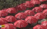 Ay Yıldızlı Şemsiyeler