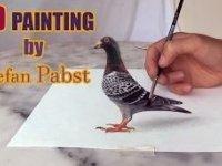 3 Boyutlu Güvercin Çizimi
