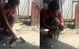 Öldü Denilen Yavru Köpeği Hayata Geri Döndürmek