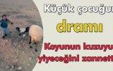 Koyunun Kuzuyu Yiyeceğini Zanneden Küçük Çocuğun Dramı