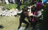 Havuza Düşmeli Türk Usulü Kız Kavgası