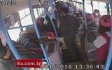 Üşüyen Köpeğin Halk Otobüsüne Binmesi