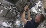 Uzayda Yumurta Nasıl Yapılır