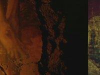 The Revenant'ın Tarkovsky Filmleri Benzerliği