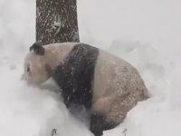 Kar Yüzünden Okulların Tatil Edilmesi (Temsili)