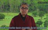 Varlığın Paradoksu  Deepak Chopra